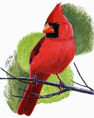 Painting - Cardinal1 by Joseph Ogle