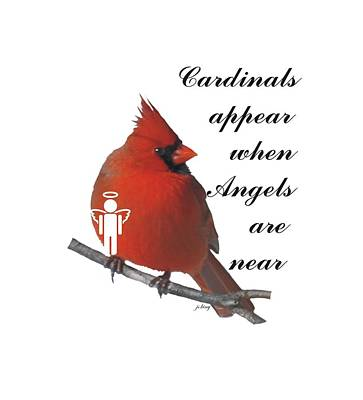 Animals Digital Art - Cardinals and Angels by Jacquie King