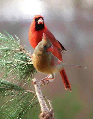 Photograph - Cardinals1 by John Freidenberg