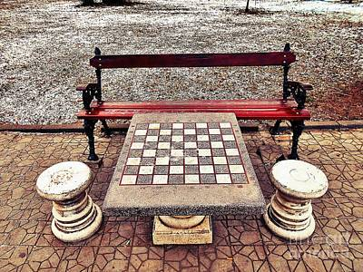 Photograph - Care For A Game Of Chess? by Erika H