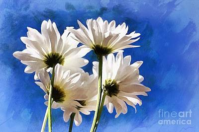 Daisy Photograph - Carefree Memories by Krissy Katsimbras