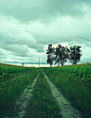 Photograph - Caressing The Corn Path by Cyryn Fyrcyd