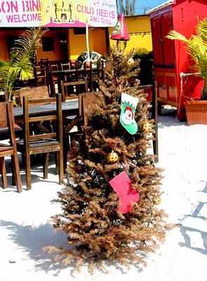 Humor Photograph - Caribbean Christmas  by Steven Digman