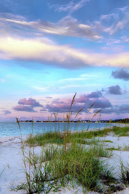 Photograph - Caribbean Dunes by Renee Sullivan