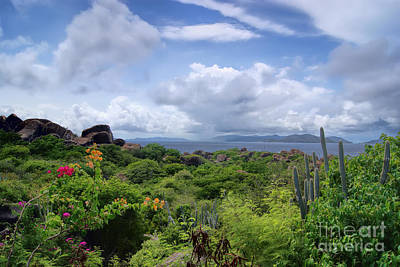 Photograph - Caribbean Island Virgin Gorda by Olga Hamilton