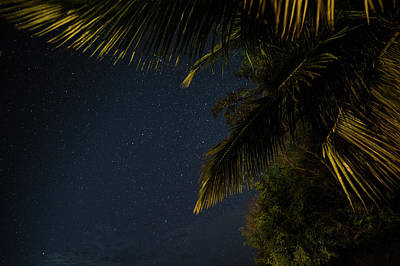 Photograph - Caribbean Nights Anse Chastanet by Toby McGuire