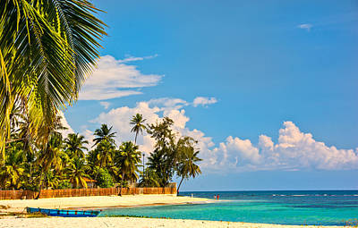 Photograph - Caribbean Paradise by Barry C Donovan