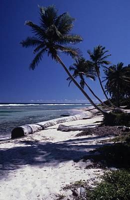 Caribbean Paradise Art Print