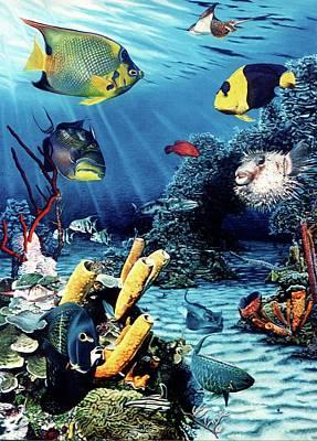 Caribbean Reeffish Original