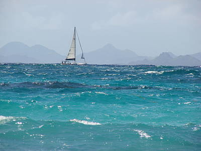 Print featuring the photograph Caribbean Sailing by Margaret Bobb