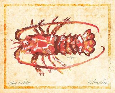 Modern Man Rap Music - Caribbean Spiny Lobster by William Depaula