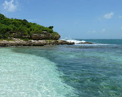 Photograph - Caribbean Waters by Carla Parris