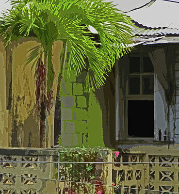 Photograph - Caribbean Window Scene by Ian  MacDonald