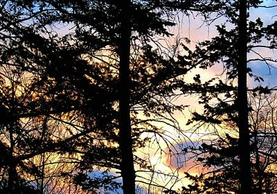 Photograph - Cariboo District Sunset by Will Borden