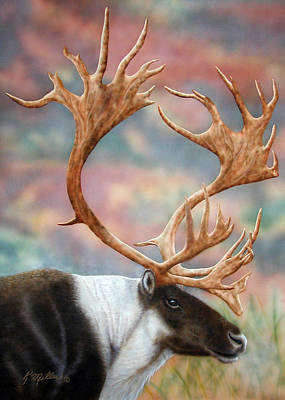 Painting - Caribou by Kathie Miller