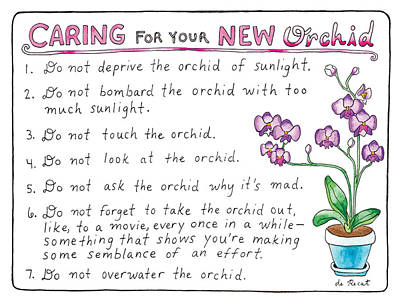 Dating Drawing - Caring For Your New Orchid by Olivia de Recat