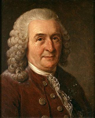 Painting - Carl Von Linne by Johan Gustaf Sandberg