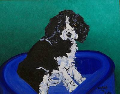 Cocker Spaniel Painting - Carlo by Lore Rossi