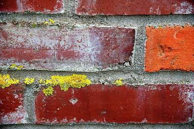 Photograph - Carlton Brick Wall by Jerry Sodorff
