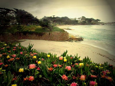 Carmel Beach And Iceplant Art Print