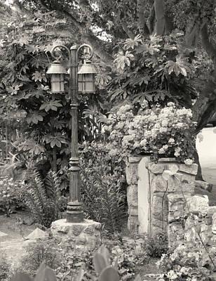 Carmel Garden Art Print by Gordon Beck