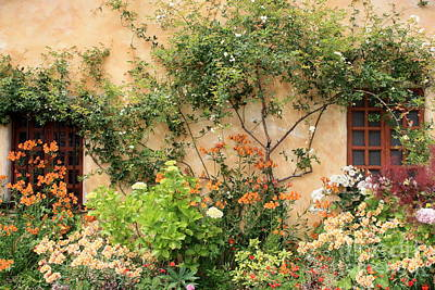 Garden Photograph - Carmel Mission Windows by Carol Groenen