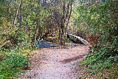 Photograph - Carmel River Footbridge At Garland Ranch Oil by Joyce Dickens