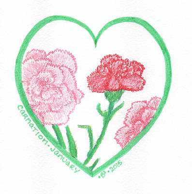 Carnation Drawing - Carnation Heartgarden by Barbara Bellissimo