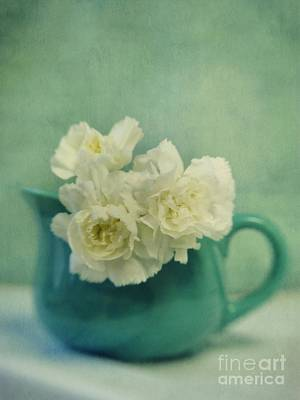 Still Life Royalty-Free and Rights-Managed Images - Carnations In A Jar by Priska Wettstein