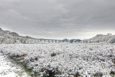 Photograph - Carnon Viaduct In The Snow by Terri Waters
