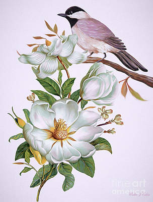 Digital Art -  Carolina Chickadee And Magnolia Flower by Walter Colvin