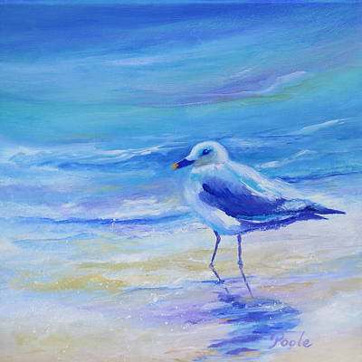 Painting - Carolina Gull by Pamela Poole