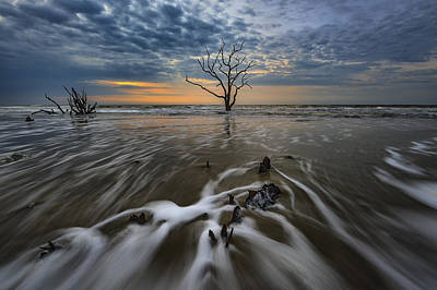 Photograph - Carolina Lowcountry by Rick Berk