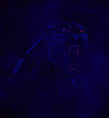 Patriot Mixed Media - Carolina Panthers Word Art 01 by Brian Reaves