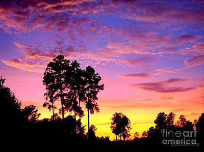 Carolina Pine Sunset Art Print by Patricia L Davidson