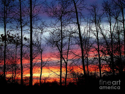 Print featuring the photograph Carolina Sunset by Sue Melvin