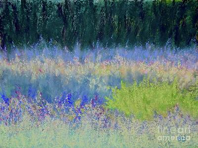 Pastel - Carol's Meadow by Barrie Stark