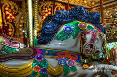 Photograph - Carousel Beauty Careful I Bight by Bob Christopher
