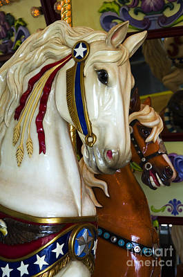 Photograph - Carousel Beauty Salem Oregon 9  by Bob Christopher