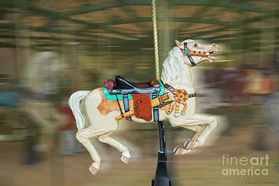 Photograph - Carousel Horse With Rifle by David Arment