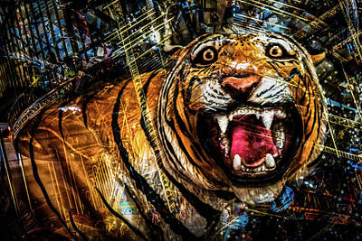 Photograph - Carousel Tiger  by Michael Arend