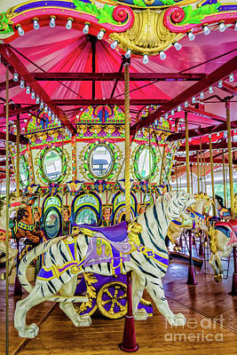 Photograph - Carousel Tiger - Nola - Lafreniere by Kathleen K Parker