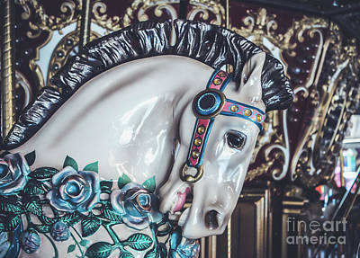 Painted Ponies Photograph - Carousel Time by Colleen Kammerer