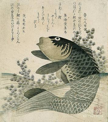 Poetry Painting - Carp Among Pond Plants by Ryuryukyo Shinsai
