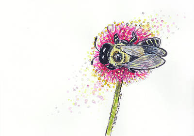 Carpenter Bee Original