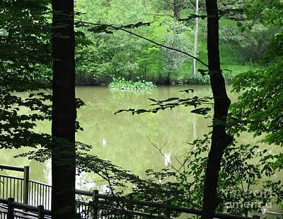 Photograph - Carpenters Lake by Amanda Kessel
