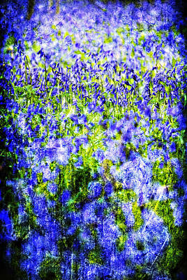Photograph - Carpet Of Blue by Meirion Matthias