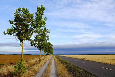 Photograph - Carretera Hacia Reliegos by Fabrizio Troiani