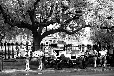 Photograph - Carriage Break Infrared by John Rizzuto