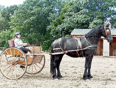 Carriage Driving Print by David Syers